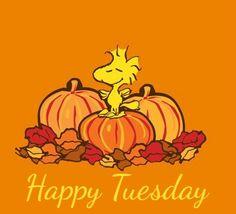 Happy Tuesday..