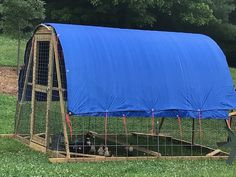 In July 2019 I built this movable poultry shelter to raise some ducks. The cattle panels make for strong, easy arched top and sides. End framing and some welded wire and chicken wire complete the rig. This is a great way to raise and to keep poultry on clean green grass! Cattle Panels, Chicken Wire, Green Cleaning, Green Grass, Shelters, Ducks, Farming, Poultry, Outdoor Gear