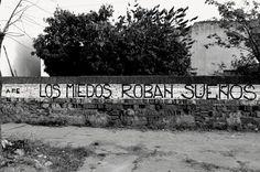 """""""Los miedos roban sueños"""". #AcciónPoética"""