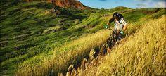 Singletrack Trail - Trek Bicycle