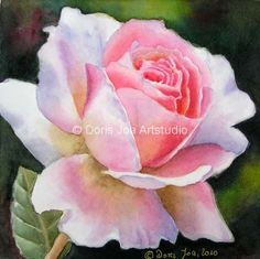 paintings Of Pink Roses | Rose Painting by Doris Joa in watercolor