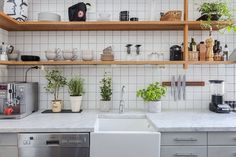 Kitchen idea // plant some useful greens e.g. basil, celery etc