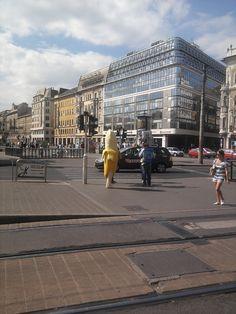 blaha lujza square
