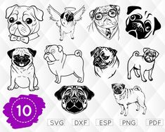 PUG SVG, pug face svg, DOG Svg, pug cricut, pug life svg, pug decal, funny pug svg, pug printable, outline, stencil, iron-on, vinyl, design Organic Dog Food, Natural Dog Food, Tatoo Pug, Tattoo Design Drawings, Puppy Food, Vinyl Shirts, Pug Life, Dog Accessories, Doodle Art