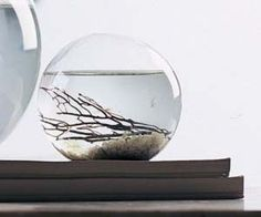 Self Sustaining Ecosphere: This self sustaining ecosphere is like owning your own little world. The ecosphere is a balance of water, air, and life technology for this self sustaining ecosphere was developed by NASA scientists in an attempt to study our own planet's biosphere.