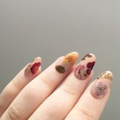 Reusable Pressed Dried Flowers Press-On Nails Set of 24