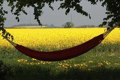 Sweden in Summer via http://www.hemnet.se/inspiration/visa/tradgard/bilder