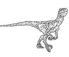 jurassic park/world coloring page - Google Search