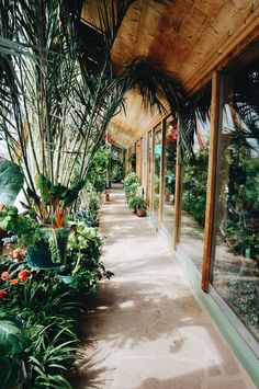 Green House As Front Porch Earthy Homes Ideas Pinterest Green Houses Front Porches And