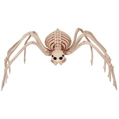 Skeleton Spider Halloween Décor ❤ liked on Polyvore featuring home, home decor, holiday decorations, halloween, halloween home decor, outside home decor, skeleton home decor, outdoor holiday decorations and outdoor home decor
