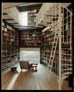 shelves and shelves of wonderful books.. and yes, the ladder too ^.^