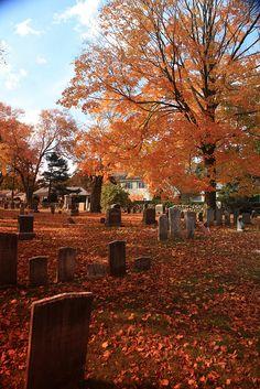 New England Autumn Grave Yard - Halloween Makeup Helloween Wallpaper, Autumn Scenes, Autumn Cozy, Autumn Witch, Autumn Aesthetic, Aesthetic Fashion, Fall Halloween, Halloween Costumes, Alien Halloween