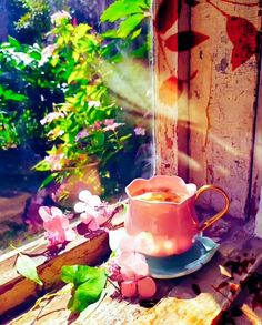 Enjoy a summer tea in a beautiful garden filled with life and beauty ☕️🌺🌸🦋💙💜💚🤍💐🌷🌹🌼 Good Morning Flowers, Good Morning Gif, Good Morning Greetings, Morning Images, Good Morning Quotes, Beautiful Nature Pictures, Beautiful Gif, Beautiful Gardens, Beautiful Fantasy Art