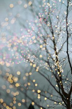 sparkle lit
