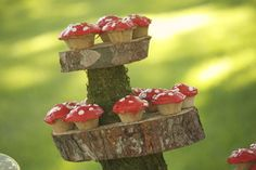 How to make a tree stump cake stand with toadstool cupcakes :)