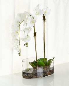 NDI Orchids in Glass Faux-Floral Arrangement Orchid Flower Arrangements, Artificial Flower Arrangements, Flower Vases, Flower Pots, Hydrangea Flower, Bulb Flowers, Fake Flowers, Fabric Flowers, Tropical Centerpieces