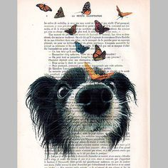 Doggy with butterflies - Mixed Media-Digital Illustration Print-Art Poster-Acrylic Painting-Holiday Decor-Drawing Illustration-Gift For Her