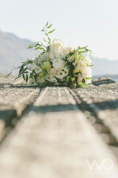 Williams Photography   Jennelle John Web   All Seasonal Flowers, Bouquets, December, Table Decorations, Photography, Photograph, Bouquet, Bouquet Of Flowers, Fotografie