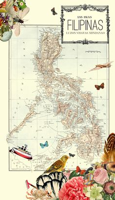 Map of the Philippines (las islas filipinas) Philippines Vacation, Philippines Tourism, Philippine Map, Jeepney, Filipino Culture, Visayas, Mindanao, Exotic Beaches, Vintage Labels