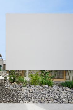Green Edge House by mA-style Architects has a hidden perimeter garden