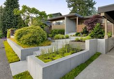 front landscaping ideas picture