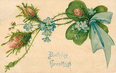 Moss Roses Shamrock Blue Ribbon Wrap Forget Me Nots Emboss Birthday 1907 Germany | eBay