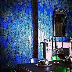 feather wallpaper interior - Szukaj w Google