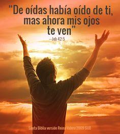 """Cuando Dios contesta nuestras oraciones, nos damos cuenta de que Él nos cuida. Tras aguantar las pruebas que le sobrevinieron, Job declaró: """"De oídas había oído de ti [Dios], mas ahora mis ojos te ven"""" (Job 42:5). Podemos """"ver"""" a Dios como nunca antes si reflexionamos con entendimiento, fe y gratitud en cómo nos ha cuidado. La intimidad con él nos infundirá paz en el corazón y la mente. https://www.lds.org/scriptures/ot/job/42.5?lang=spa#4"""