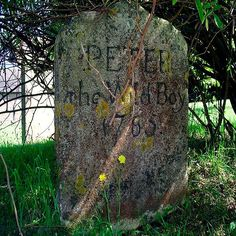 """Peter the Wild Boy 1785...  """"a feral 12 yr old  found in the German forest in 1725. Peter walked on all fours, ate grass & leaves and never learned to speak.He was brought to London and lived at the castle,virtually a """"pet"""". He is buried in Hertfordshire,England."""