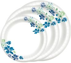 CFS energy-saving tip- use paper plates and plastic forks/knives/spoons to save energy. Dixie paper plates seem to hold up the best. You can cook all kinds of things on them in the microwave.