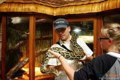 Agama, gekon, ptasznik, wąż boa, skunks, żółw, króliki, ryby i ptaszki. Wszystko na wyciągnięcie ręki. Atrakcja nie tylko dla najmłodszych!