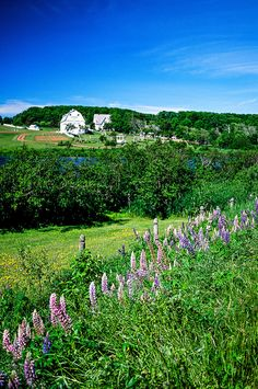 Anne of Green Gables Museum at Silver Bush, Prince Edward Island, Canada