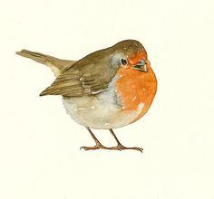 Robin art print from original watercolour | lorisworld