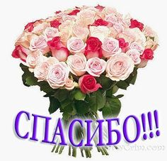 Делаем Сову и Муху!!!Мастер-Класс!!!!   Страна Мастеров Crafts For Kids, Floral Wreath, Thankful, Wreaths, Crochet, Pictures, Collection, Crochet Blouse, Tricot