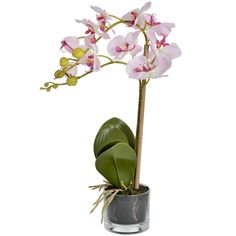 Serenity Pink Potted Orchid | From Baytree Interiors