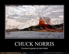 Those are just thousands of dead seals murdered by coca cola sales men. Polar bears are killers<< No, it was Chuck Norris. Don't you read? Chuck Norris Funny, Chuck Norris Facts, Very Demotivational, Funny People, Funny Things, Funny Stuff, Education Humor, Hilarious, Funny Vid