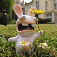 raving rabbid with dandelion