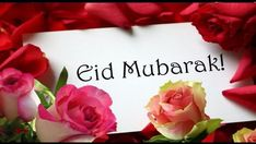 Eid ul Fitr cards in this post you can easily get the Eid ul Fitr cards and messages or easily sent to friends on Happy Eid day. Eid is the most popular day in all over the world especially Muslims celebrate this event with own Islamic religion method. Eid Mubarak Foto, Eid Mubarak Status, Eid Mubarak Quotes, Adha Mubarak, Eid Ul Adha Images, Eid Mubarak Images, Eid Mubarak Greetings, Happy Eid Mubarak, Eid Al Fitr