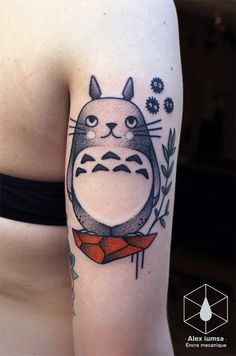 ohh Totoro !