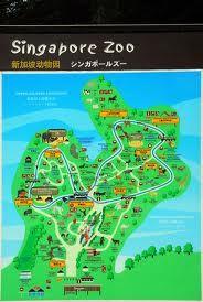 singapore zoo - Google Search