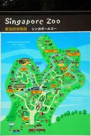 singapore zoo - Google Search