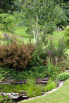 plantings around pond