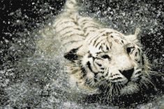 White Tiger in Water Counted Cross Stitch Kit � Friendly Faces