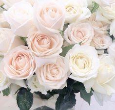 @thaynakarolayne ♡ #flores #fotoscomflores #blooms #roses