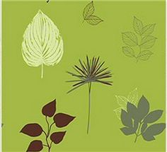EH61204 Flower Wallpaper $43.08