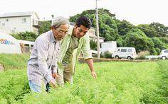 水野さんのニンジン畑の中で生育を見る、森さんと協力者の水田さん