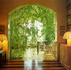 Bohemian Indoor Garden - would make a fantastic bathing suite.