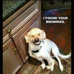 funny stuff