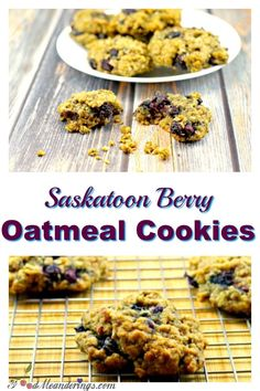 Saskatoon berries (Juneberries) elevate the coconut, brown sugar and cinnamon flavors in this delicious oatmeal cookie symphony with a nutty almond note~! Saskatoon Recipes, Saskatoon Berry Recipe, Baking Recipes, Cookie Recipes, Dessert Recipes, Donut Recipes, Snack Recipes, Beignets, Oatmeal Cookies