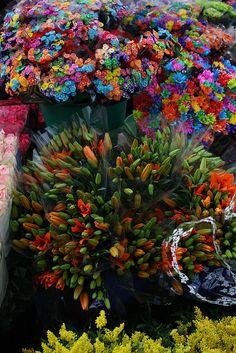 Plaza de Mercado de Paloquemao en Bogotá Colombia